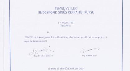 Sinüs Cerrahisi, en iyi burun doktoru, istanbul uzman kbb doktoru.