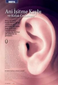 tek kulakta işitme kaybı, ani işitme kaybı nedenleri