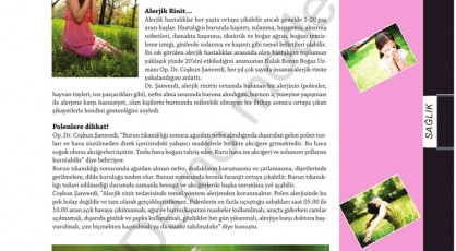 İstanbul Kulak Burun Boğaz Doktoru