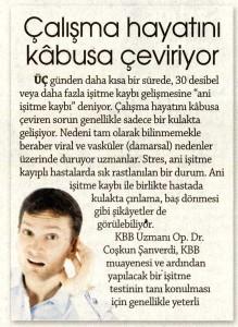 İstanbul KBB Doktoru, Sensorinöral İşitme Kaybı