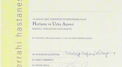 Horlama ve Uyku Apnesi İstanbul | Yüz Plastik ve Rekontrüktif Cerrahisi Eğitimi.